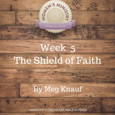 Week 5 Meg Knauf